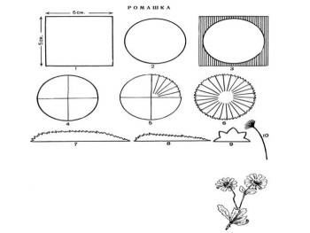 Изготовление ромашки из бумаги