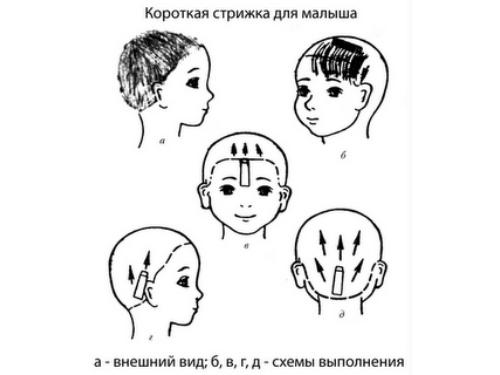 Схема стрижки для малыша