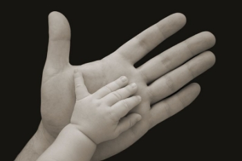 Установление отцовства после смерти отца