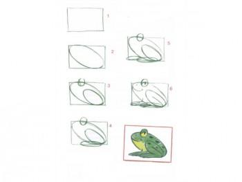 Поэтапное рисование лягушки